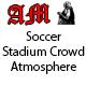 Football Stadium Crowd Atmosphere
