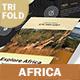 Africa Adventure Trifold Brochure