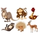 Sticker Set with Different Types of Animals