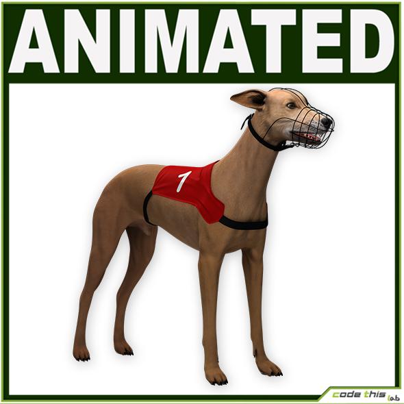 Greyhound Dog CG - 3DOcean Item for Sale