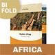 Africa Adventure Bifold / Halffold Brochure