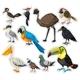 Sticker Sset with Many Birds
