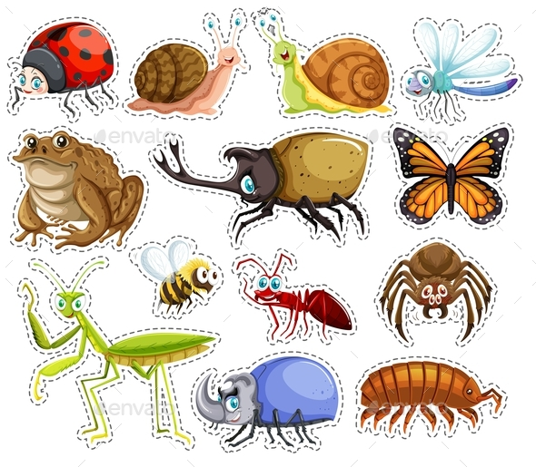 Graphicriver Sticker Set of Many Insects 19294162