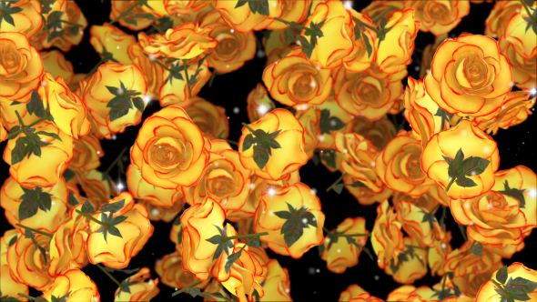 VideoHive Roses Yellow 19298232