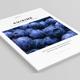 Cuisine | InDesign Multipurpose Template