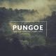 Pungoe Presentation Template