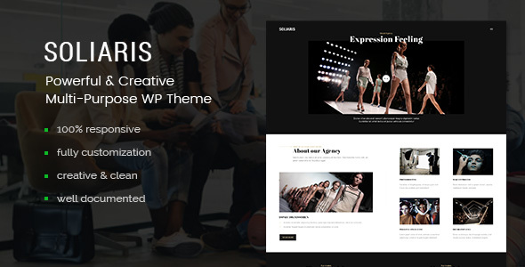 Download Soliaris - Multi-Concept Business WordPress Theme nulled download