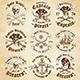 Vector Pirate Logo Templates