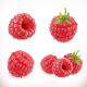Raspberry. Sweet Fruit. 3d Vector Icons Set. Realistic Illustration