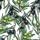 Download Vector Seamless Pattern with Olive Branch