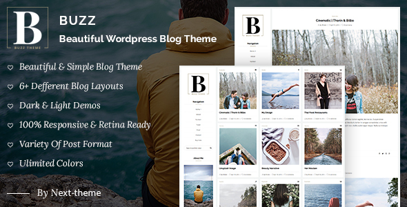 Download Buzz - Responsive WordPress Blog Theme