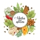 Download Vector Vector Winter Round Design with Spices and Herbs
