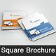 Web Design Square  Brochure Templates
