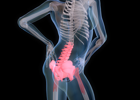 Back Pain medical model - 3DOcean Item for Sale