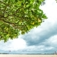 Beautiful Sandy Beach, Amazing Sky and Big Green Tree. Tropical Bali Island, Indonesia