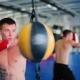 Boxer Focuses on Impact.