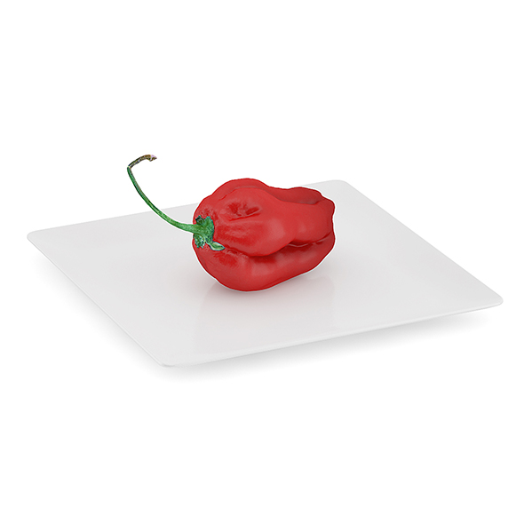Habanero Chilli on White Plate - 3DOcean Item for Sale
