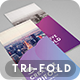 Corporate Minimal Trifold Template