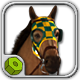 Equipped Racehorse CG