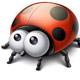 soulladybug