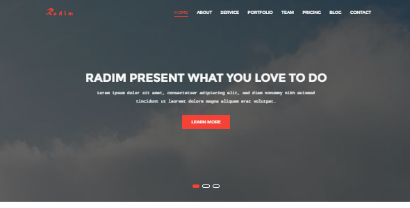 Radim - One Page Business Template
