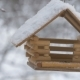 Birds Fly Up To the Feeder and Take Seeds, Snow on Trees, Falling Snowflakes for the Birdhouse