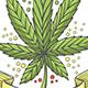 Medical Marijuana Logo Ten
