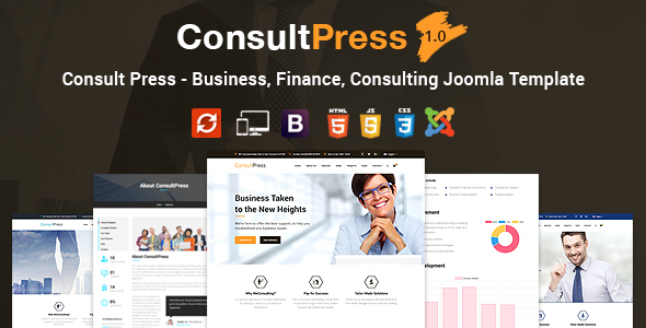 Seek advice from Press – Finance &amp Consulting Company Joomla Template (Company)