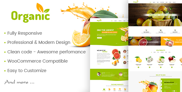 AmyOrganic - Organic and Healthy Theme for WordPress