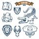 Safari Hunting Club Animals Vector Icons Set