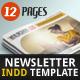 Newsletter Indesign Vol1