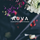 Auva - Creative Powerpoint Template