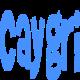 caygriwebsolution