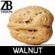 Walnut 003
