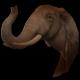 ElephantTeam