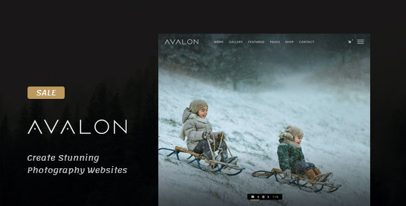 Download Avalon - Photography and Portfolio WordPress Theme for Photographers