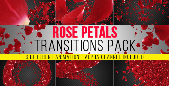 VideoHive 6 Rose Petals Transition Pack 19393753