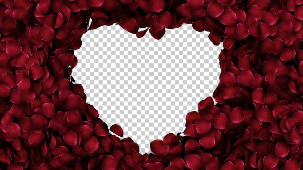 VideoHive Animation Petals of Roses in a Heart 19400754
