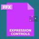 Expression Controls