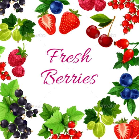 Twigs with Berry or Fruit Food Poster