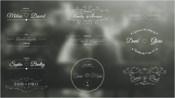 VideoHive Wedding Labels 19414957