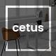 Cetus - Creative Portfolio Psd Template