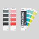 Pantone Color Cards  Mock-up