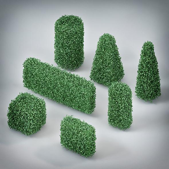 Plants Bush - 3DOcean Item for Sale