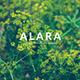 Alara - Creative Powerpoint Template