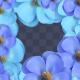 Looped Beautiful Flower Frame 01