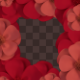 Looped Beautiful Flower Frame 04