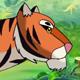Bengal Tiger Walks Through the Jungle
