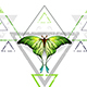 Geometric Pattern with Green Butterfly