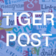 Tiger Post - Facebook Auto Post Multi Pages/Groups/Profiles
